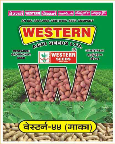 Research GROUNDNUT